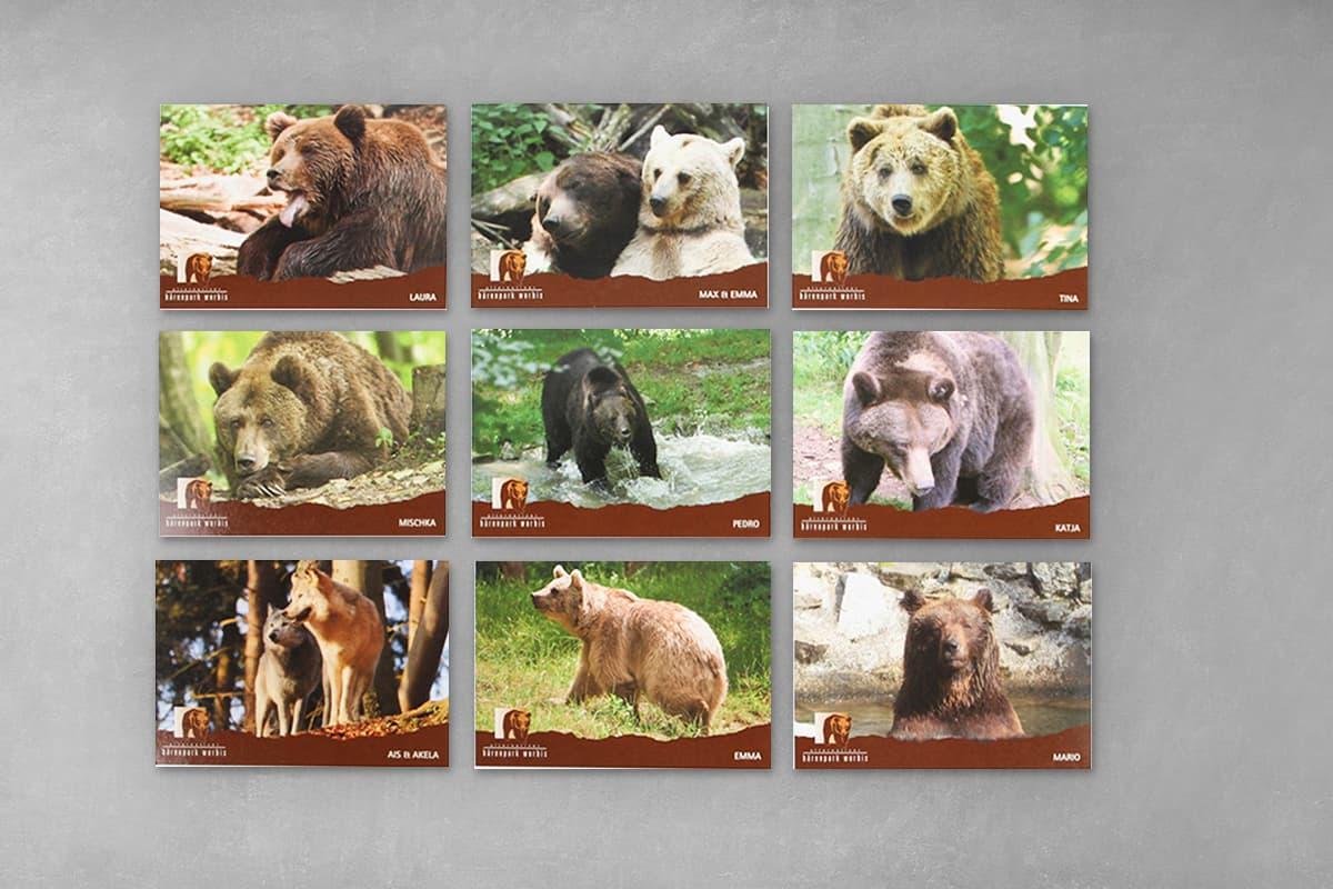 Klassische Postkarte mit individueller Gestaltung für den Alternativen Bärenpark in Worbis